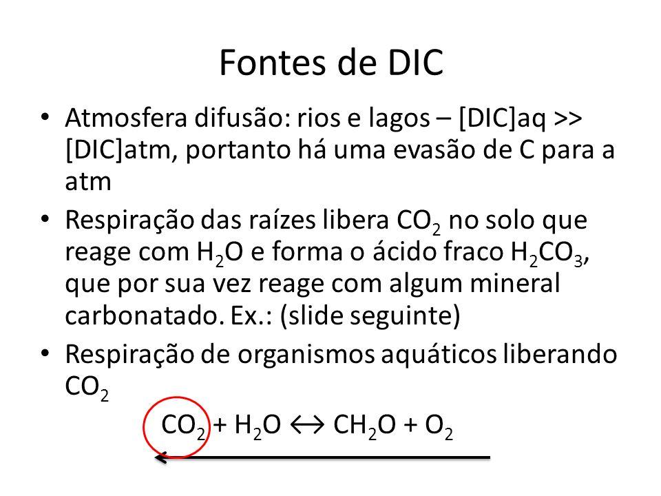 Fontes de DIC Atmosfera difusão: rios e lagos – [DIC]aq >> [DIC]atm, portanto há uma evasão de C para a atm.